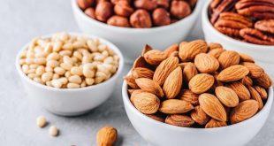 kacang dengan protein tinggi