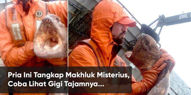 nelayan tangkap mahkluk misterius